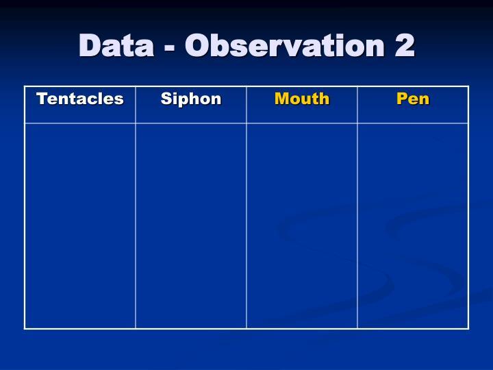 Data - Observation 2