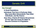 genetic drift2