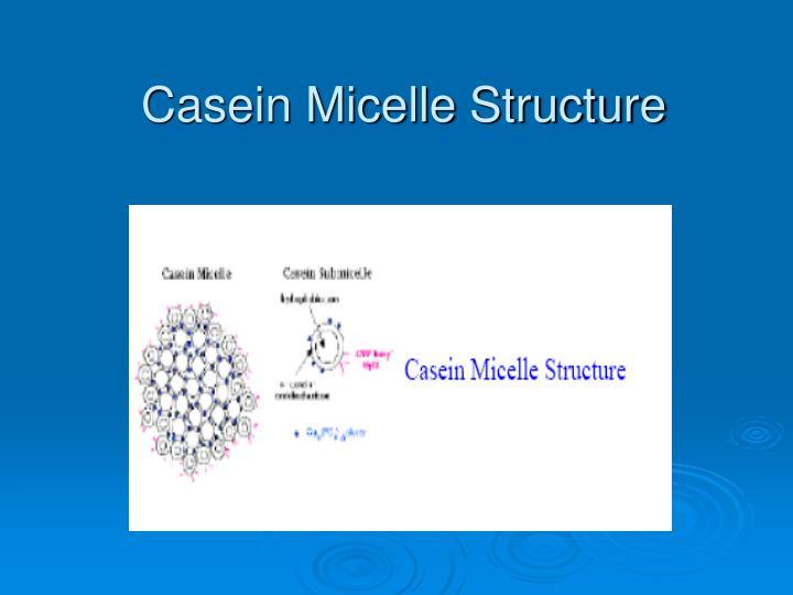 Casein Micelle Structure