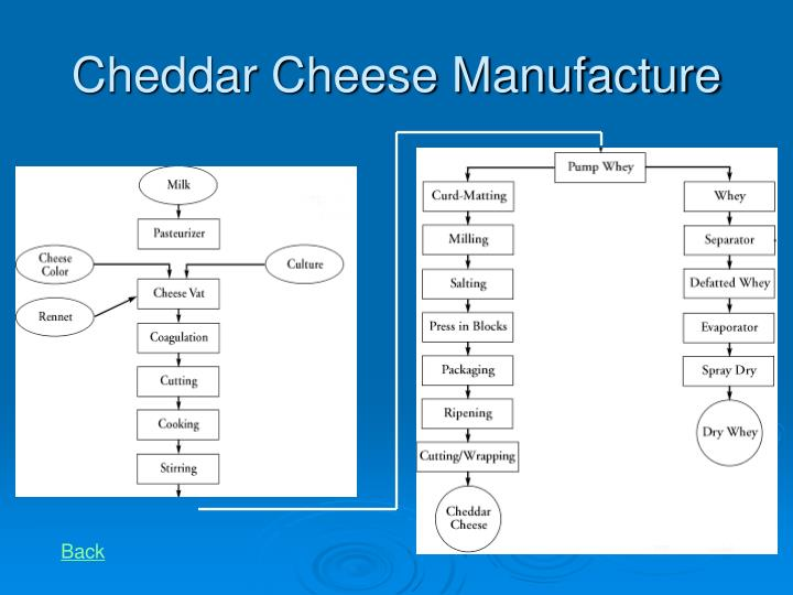Cheddar Cheese Manufacture