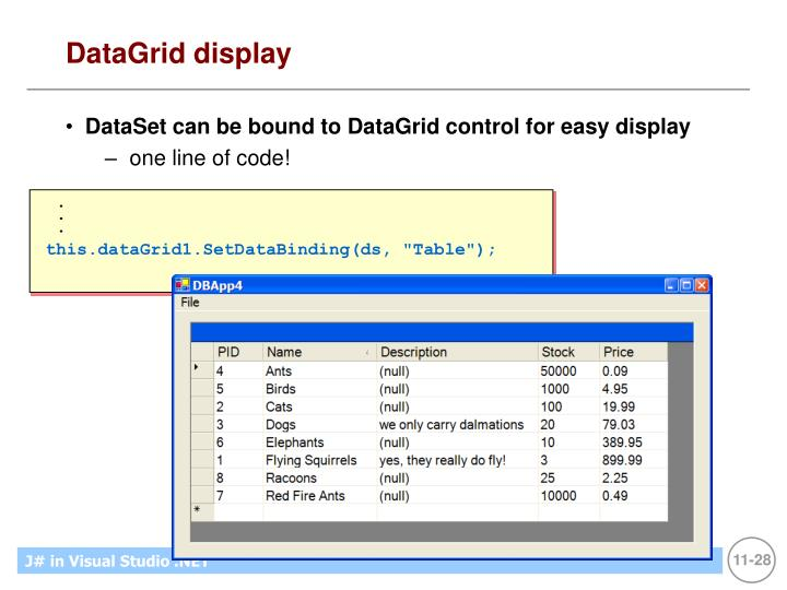 DataGrid display