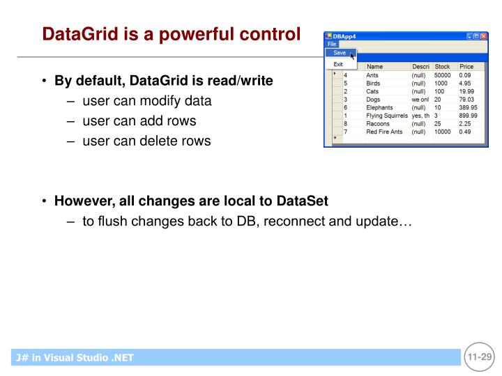 DataGrid is a powerful control