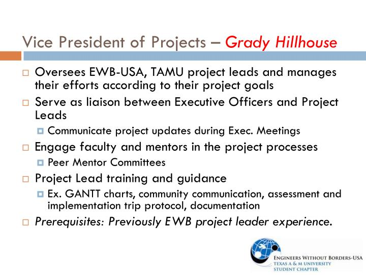 Vice President of Projects –