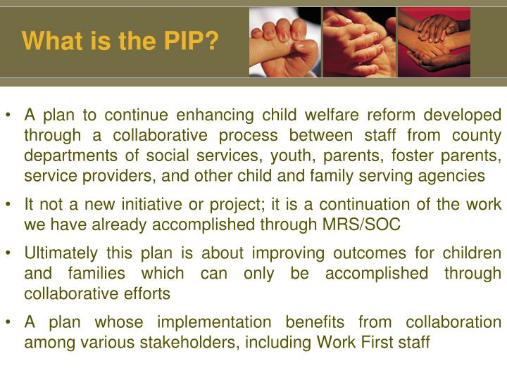 What is the PIP?