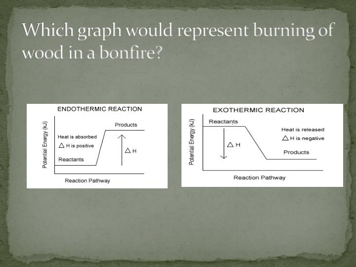 Which graph would represent burning of wood in a bonfire?