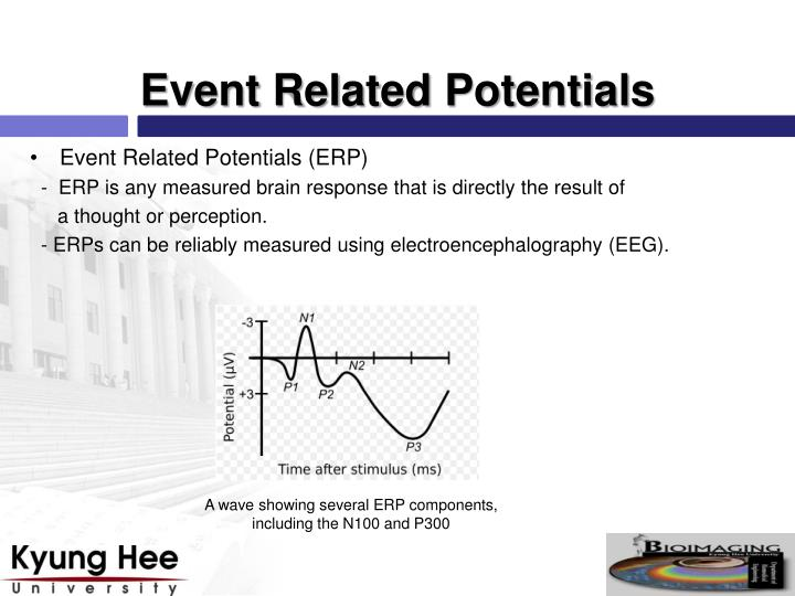 Event Related Potentials (ERP)