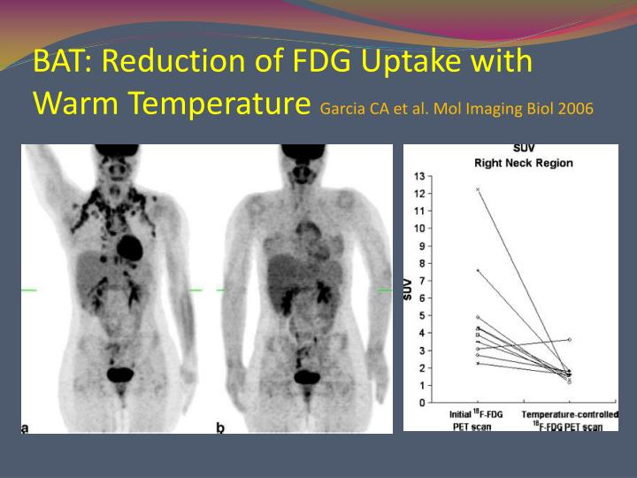 BAT: Reduction of FDG Uptake with Warm Temperature