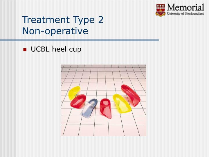 Treatment Type 2