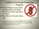 southern pine beetle prevention program
