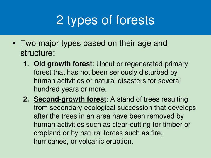 2 types of forests
