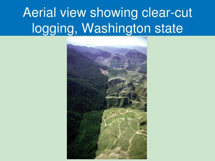 Aerial view showing clear-cut logging, Washington state
