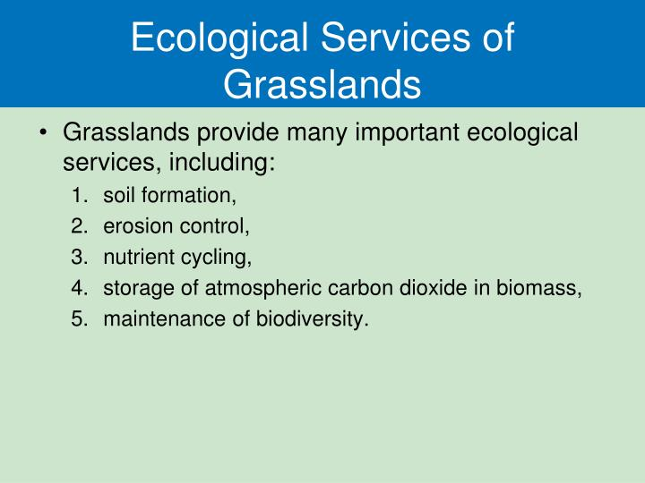 Ecological Services of Grasslands
