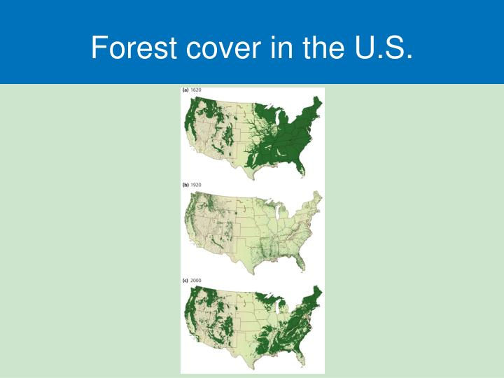 Forest cover in the U.S.
