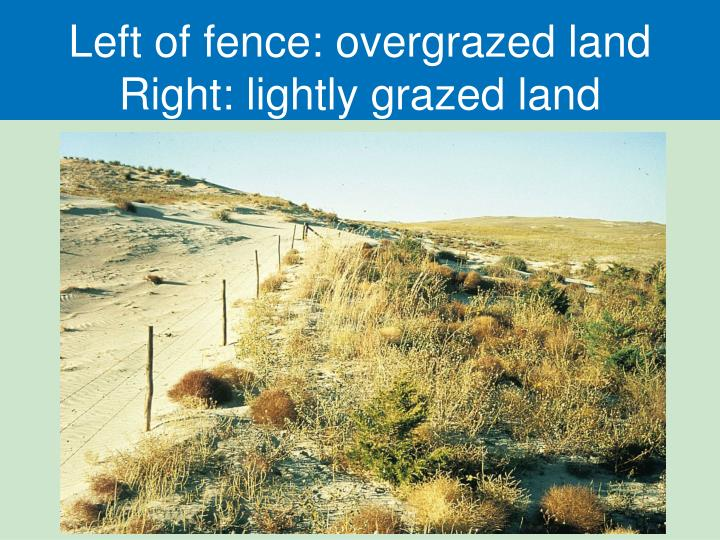 Left of fence: overgrazed land