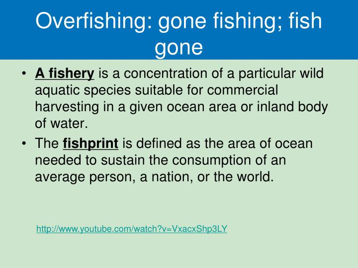 Overfishing: gone fishing; fish gone