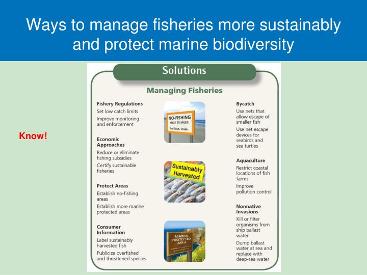 Ways to manage fisheries more sustainably and protect marine biodiversity