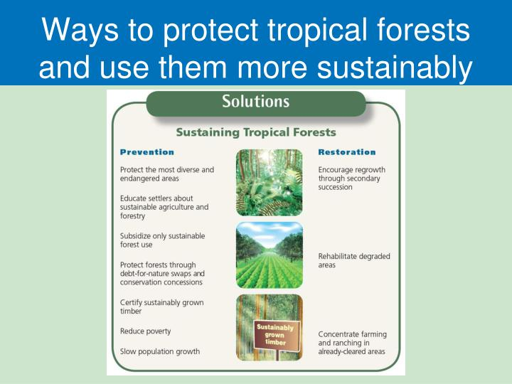 Ways to protect tropical forests and use them more sustainably
