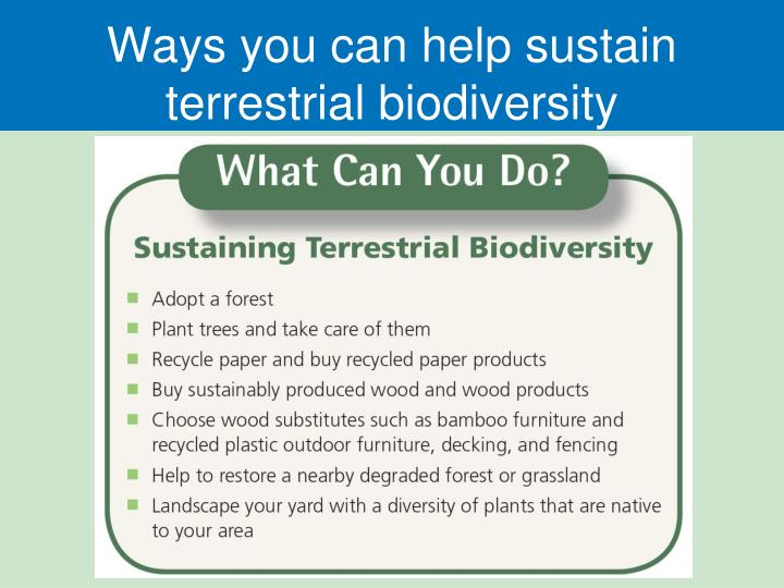Ways you can help sustain terrestrial biodiversity