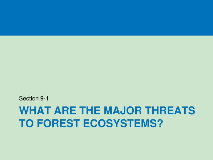 What are the major threats to forest ecosystems