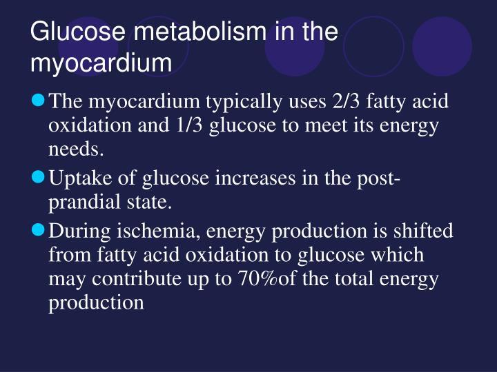 Glucose metabolism in the myocardium