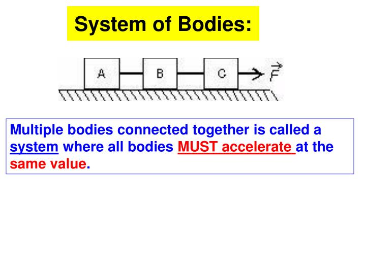 System of Bodies: