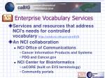 enterprise vocabulary services