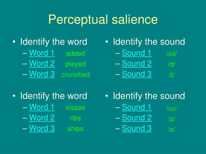 Perceptual salience