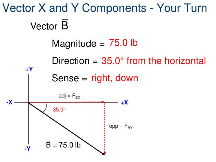 Vector X and Y Components - Your Turn
