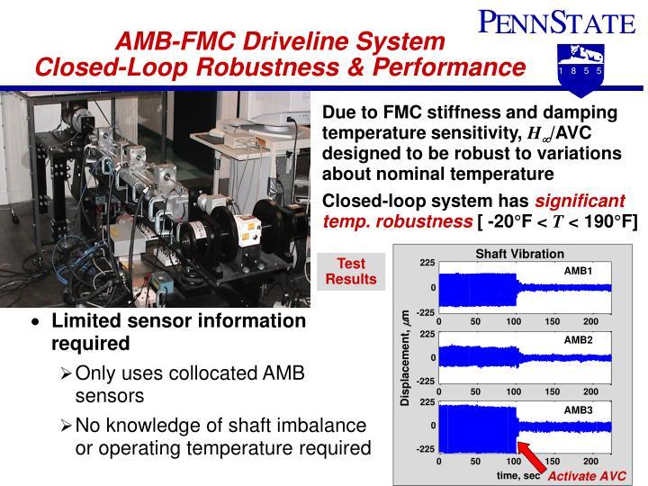 AMB-FMC Driveline System