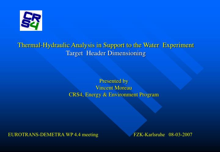 Thermal hydraulic analysis in support to the water experiment target header dimensioning