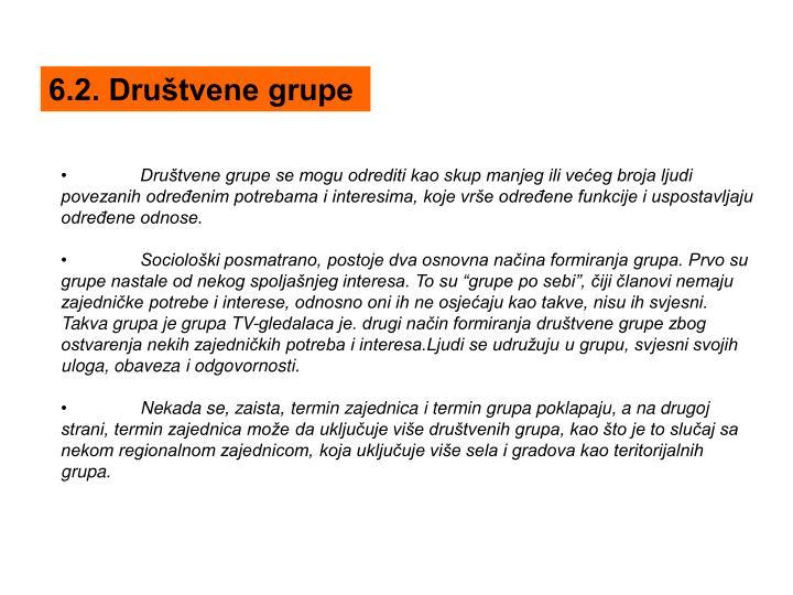 6.2. Društvene grupe