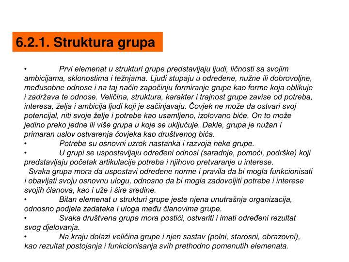 6.2.1. Struktura grupa