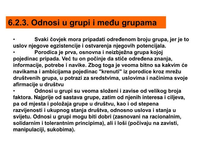 6.2.3. Odnosi u grupi i među grupama