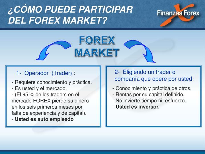 2- Eligiendo un trader o compañía que opere por usted