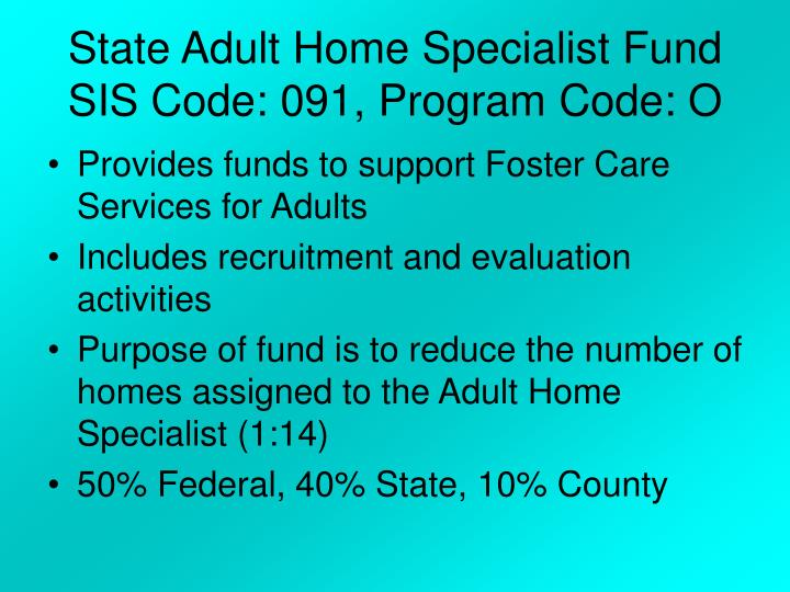 State Adult Home Specialist Fund