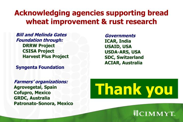 Acknowledging agencies supporting bread wheat improvement & rust research
