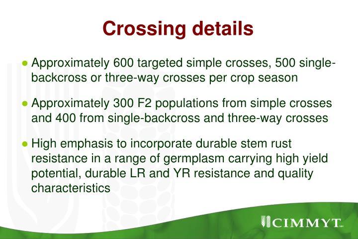 Crossing details