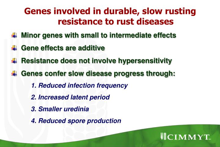 Genes involved in durable, slow rusting resistance to rust diseases