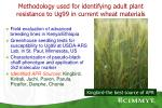 methodology used for identifying adult plant resistance to ug99 in current wheat materials