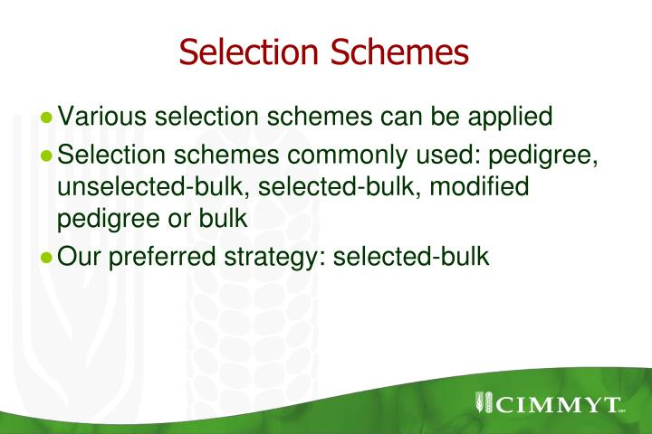 Selection Schemes