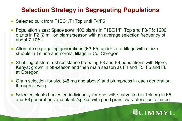 Selection Strategy in Segregating Populations