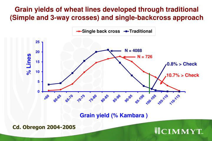 Grain yields of wheat lines developed through traditional (Simple and 3-way crosses) and single-backcross approach