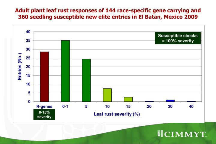 Adult plant leaf rust responses of 144 race-specific gene carrying and 360 seedling susceptible new elite entries in El Batan, Mexico 2009