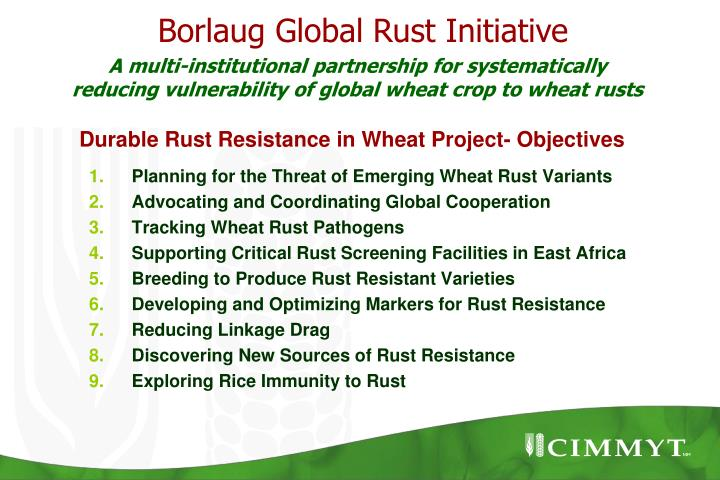 Planning for the Threat of Emerging Wheat Rust Variants