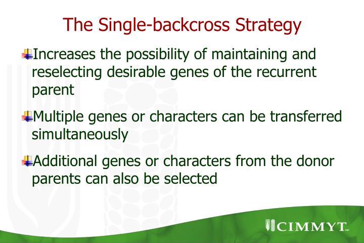 The Single-backcross Strategy