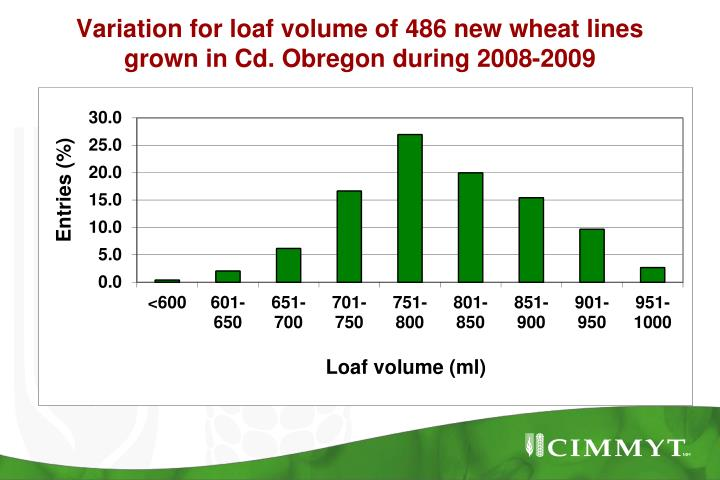 Variation for loaf volume of 486 new wheat lines grown in Cd. Obregon during 2008-2009