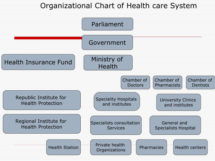 Organizational Chart of Health care System