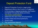 deposit protection fund