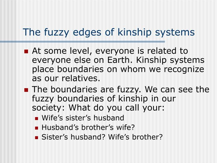 The fuzzy edges of kinship systems