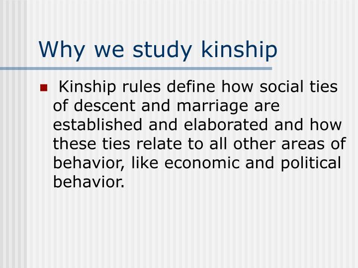 Why we study kinship